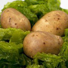 aardappel-in-zeewier2
